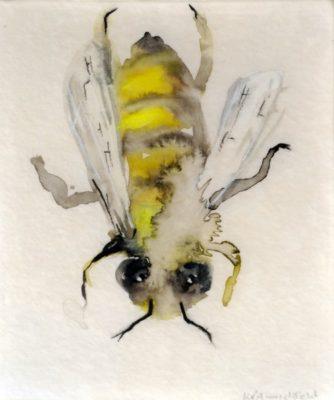 Little Bee I