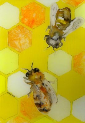 Honeycomb with Two Bees.