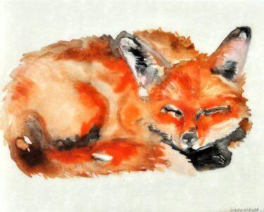 Sleeping Fox II.