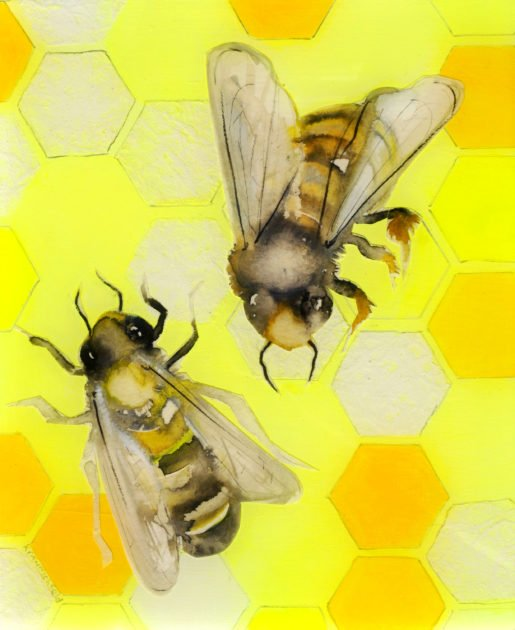 yellow-honeycomb-with-two-bees-ii